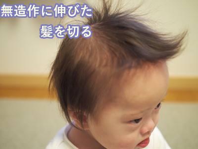 ダウン症,ブログ,散髪,幼児,スキばさみ,さわやか