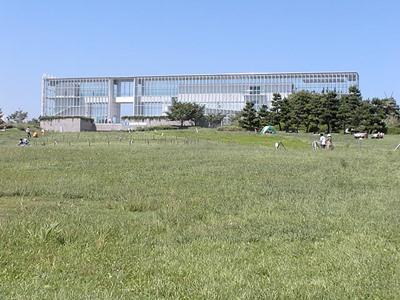 ダウン症,ブログ,大きな,公園,葛西臨海公園