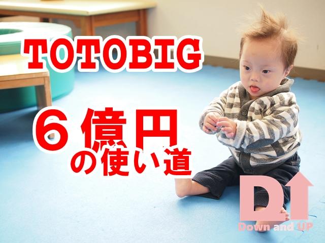 TOTOBIG,6億円,当たった,エイプリルフール,ダウン症