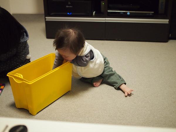 きょうだい児,5歳,誕生日,お姉ちゃん,ダウン症,ブログ