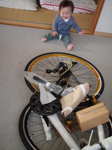 LIG,クロスバイク,自転車通勤,ダイエット,ダウン症,ブログ