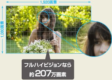 panasonic,4K,ビデオカメラ,WX970m,ダウン症,ブログ