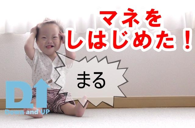 マネ,ダウン症,ブログ,1歳9か月,もしもし,お腹,まる