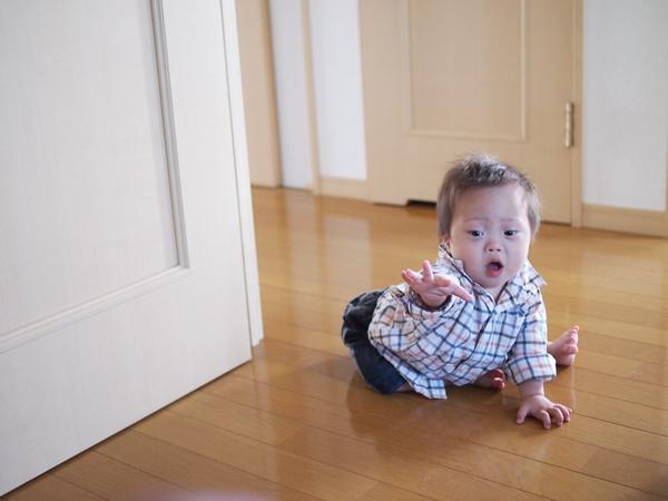 パパ,大好き,着いてくる,アップ君,ダウン症,ブログ