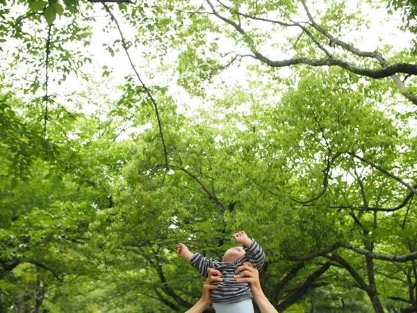 福岡城跡地,舞鶴公園,6月7日,反原発,黒田官兵衛,ダウン症,ブログ