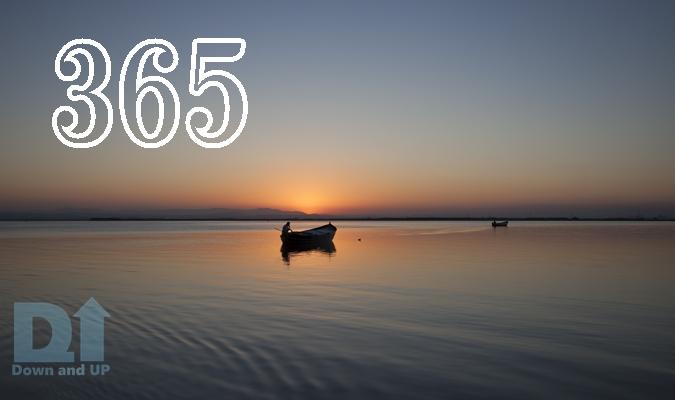 毎日更新,ブログ,ダウン症,365,記念
