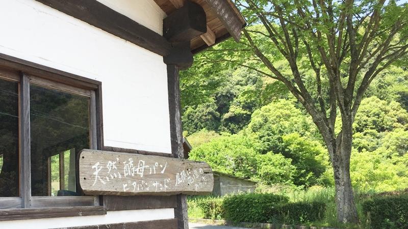 三瀬,福岡,マイナスイオン,そば,ダウン症,ブログ