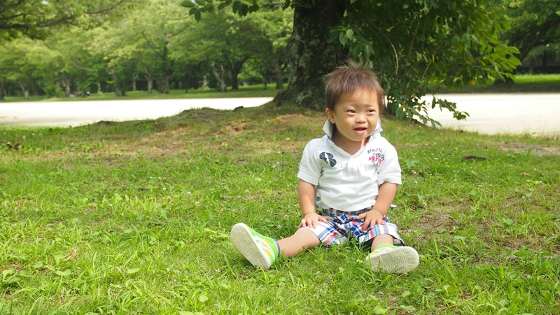 舞鶴公園起きる