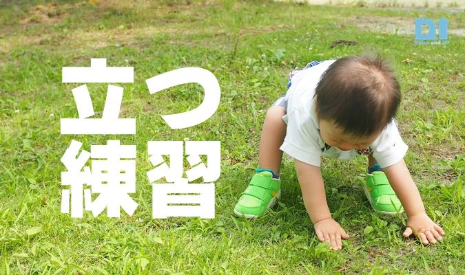 舞鶴公園立つ練習アイキャッチ