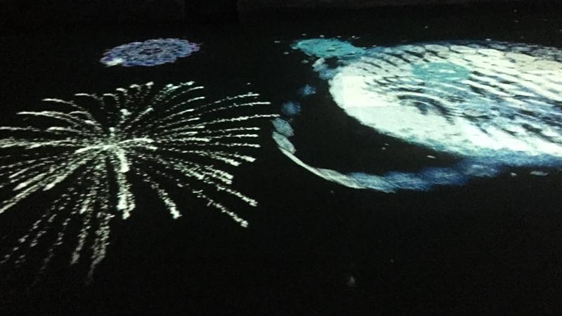夜の水族館 プロジェクションマッピング